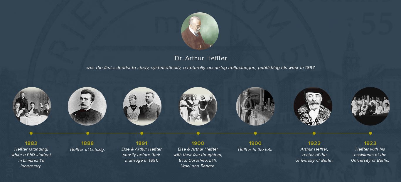 Image of a banner timeline of Dr. Arthur Heffter's life